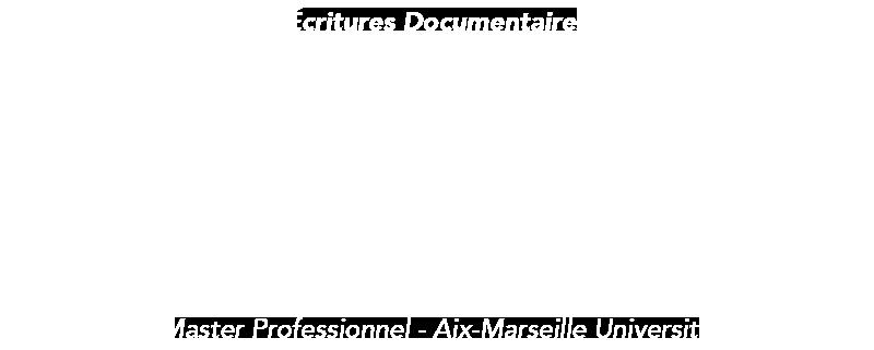 Logo du Master